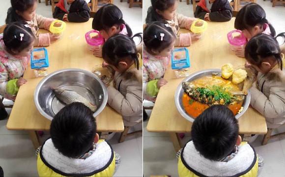 原来,幼儿园老师说让带一条小鱼来观察,原来带鱼来,不是吃的.