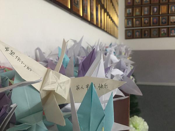 奉献榜下,医学生们折叠的千纸鹤.