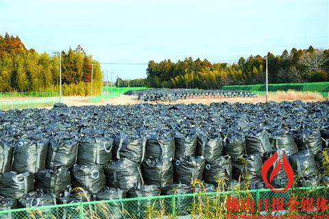 """日本举行""""3·11""""大地震6周年纪念活动 近8万原福岛居民仍在避难"""