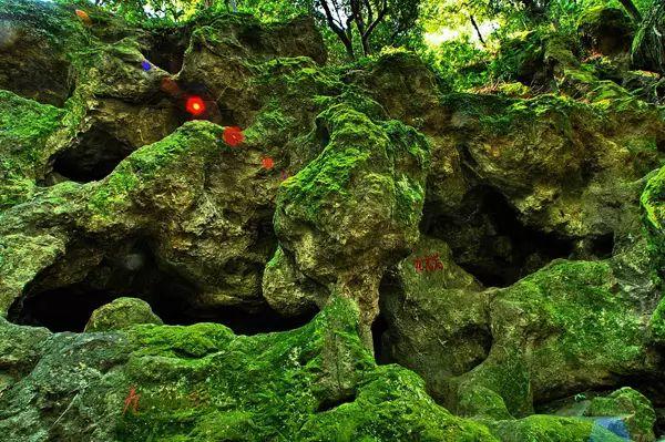西樵山国家森林公园位于佛山市南海区,是广东四大名山之一.
