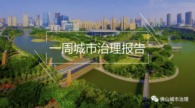 市长朱伟赴顺德杏坛调研节假日安全和美丽乡村建设工作