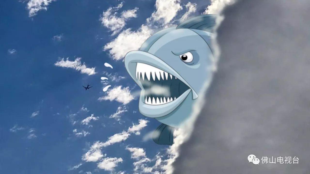 也可能是鲸鱼小可爱!