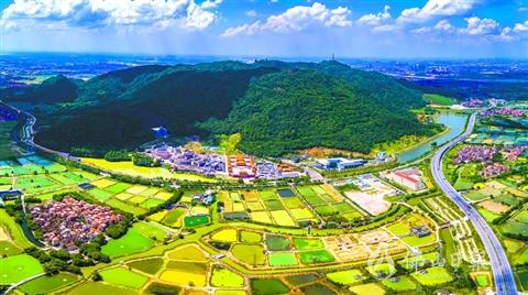 中国重要农业文化遗产名单公示  佛山基塘农业系统上榜