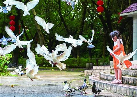三水女摄影师黎顺青:与影像来一场穿越时空的对话