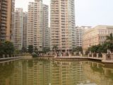 祖庙兰桂社区